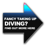 Get into diving