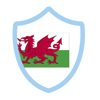Swim Wales West County shield
